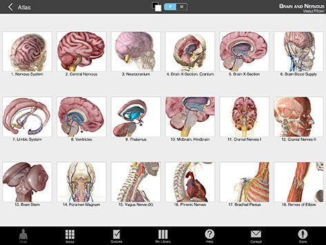 Ios 3d Viewing Application Training Anatomy Brain Nervous