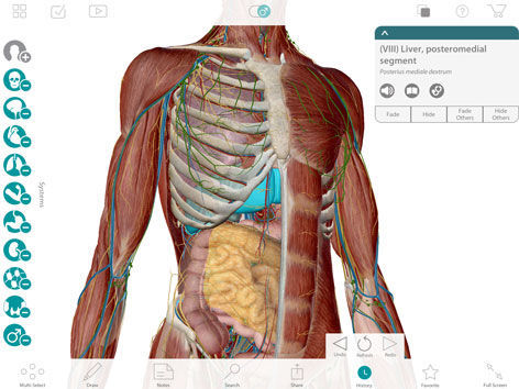 3D ANATOMY ATLAS DOWNLOAD FREE
