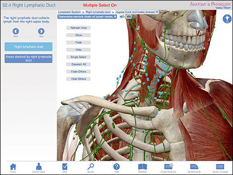 IOS 3D viewing application / training / anatomy - Anatomy ...