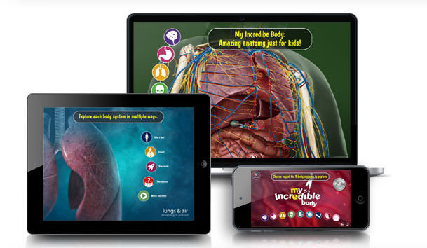 3D viewing software / education / anatomy - My Incredible Body ...