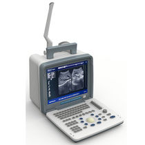 Portable ultrasound system / for multipurpose ultrasound imaging / B/W / built-in console
