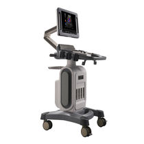 On-platform ultrasound system / for multipurpose ultrasound imaging / B/W / 3D/4D