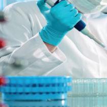Prothrombin test kit / for genetic mutations / coagulation / for G20120A mutation