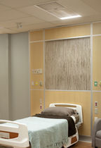Ceiling-mounted lighting / hospital / multi-function