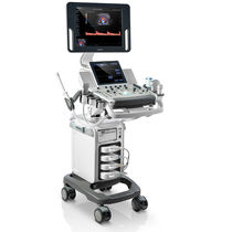 On-platform ultrasound system / for multipurpose ultrasound imaging / touchscreen