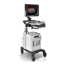 On-platform ultrasound system / for multipurpose ultrasound imaging / touchscreen / elastography