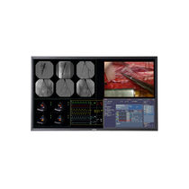 Surgical display / high-definition / LCD / LED-backlit