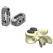 Lumbar interbody fusion cage / posterior