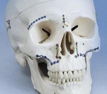 Maxillofacial reconstruction compression plate