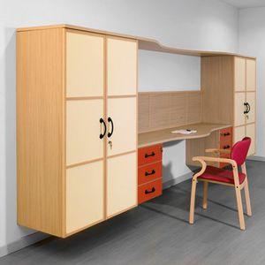 Wonderful Storage Cabinet / Patient Room / With Shelf / 2 Door