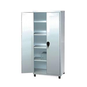 Medicine Cabinet / Hospital / 2 Door / Fixed