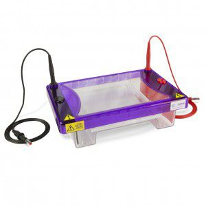 scientific research electrophoresis system / horizontal / bench-top