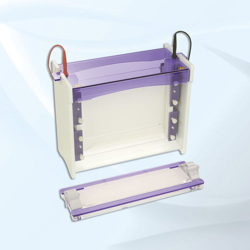 isoelectric focusing electrophoresis system / for proteins / vertical / bench-top