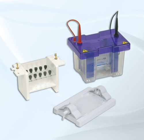 capillary electrophoresis system / vertical / bench-top