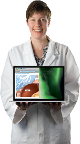 education software / for life sciences applications