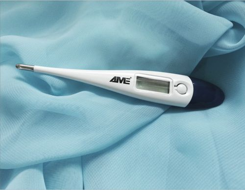 medical thermometer / electronic / oral