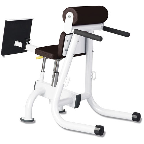 lumbar extension weight training bench