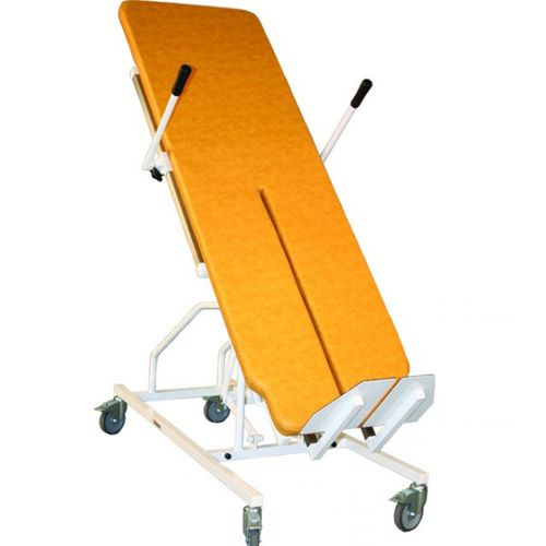 1 section tilt table / electric / on casters