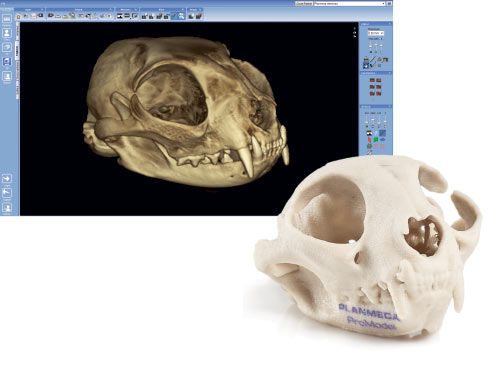 3D viewing software / anatomy / veterinary / surgical - Planmeca ...