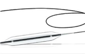 PTCA catheter / coronary / balloon