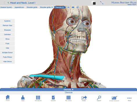 Capture Software 3d Viewing Education Anatomy Human Anatomy