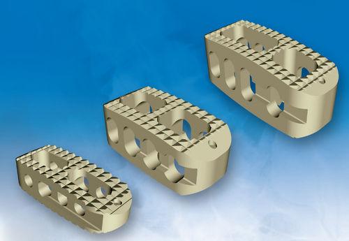 Lumbar interbody fusion cage / posterior / transforaminal Pathway TLIF PLIF Custom Spine