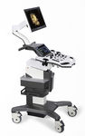 on-platform, compact ultrasound system / for gynecological and obstetric ultrasound imaging / for urology ultrasound imaging / B/W
