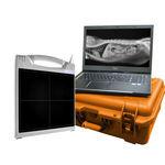 veterinary radiography flat panel detector / portable