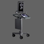 on-platform, compact ultrasound system / for urology ultrasound imaging / touchscreen / B/W