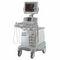 on-platform ultrasound system / for multipurpose ultrasound imaging / 3D/4D