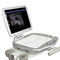 Portable, ultrasound system with trolley / for multipurpose ultrasound imaging Orcheo Lite Sonoscanner