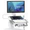 on-platform ultrasound system / for multipurpose ultrasound imaging / B/W / color doppler