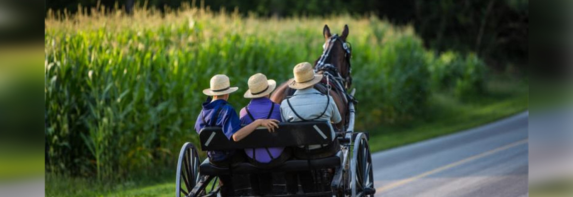 Isolated Amish Group Carries Anti-aging Gene