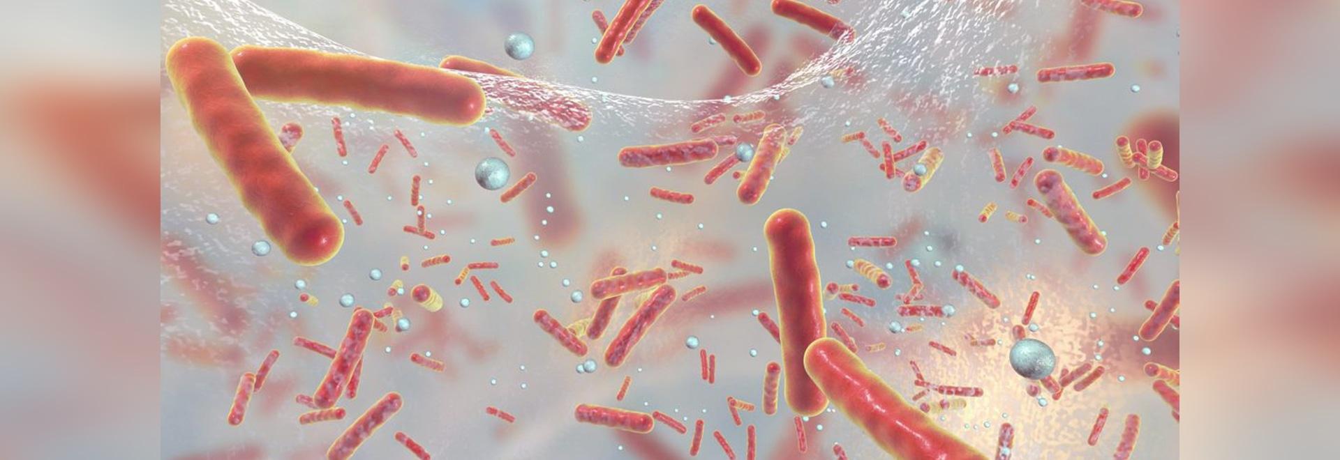 Machine learning identifies antibiotic resistance genes