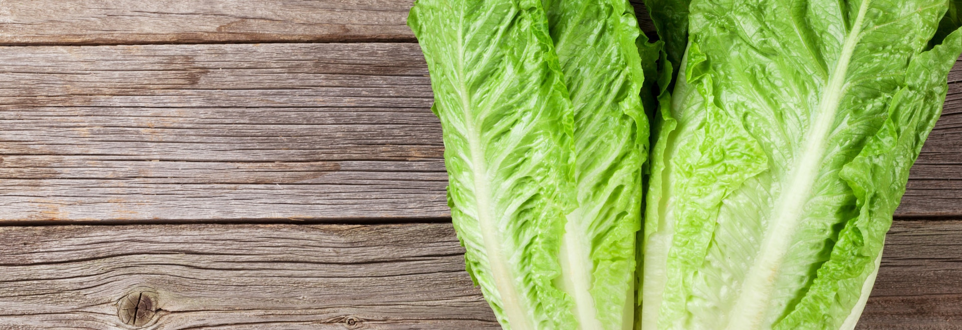 Source of E. Coli in Deadly Romaine Lettuce Outbreak Finally Found