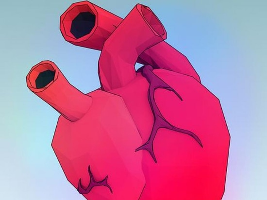 A New Way to Model the Heart Valve