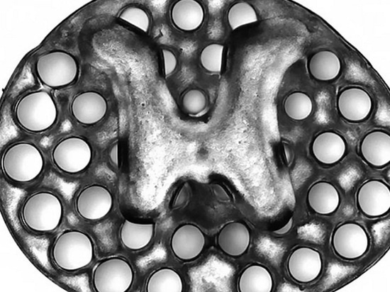 A 3D printed, 2mm implant (slightly larger than the thickness of a penny) used as scaffolding to repair spinal cord injuries in rats. The dots surrounding the H-shaped core are hollow portals throu...