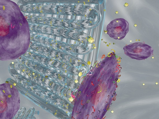 New Bioink for 3D Printing and Protein Therapy