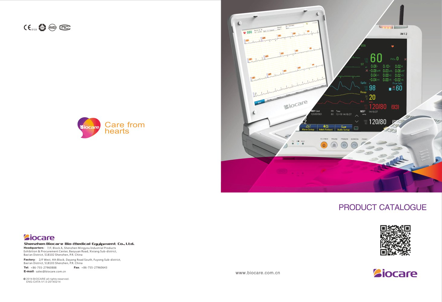 Pdf manual electronics ecg replacement