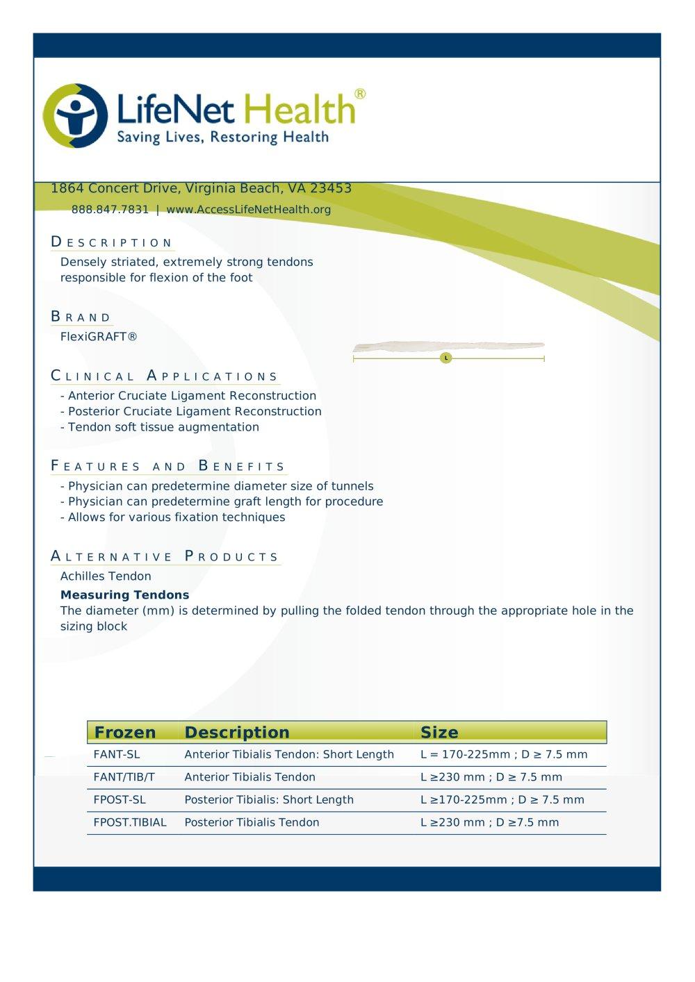 Tibialis Tendon Lifenet Health Pdf Catalogs Technical