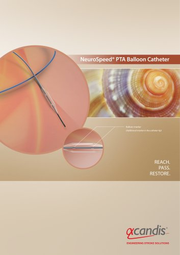 NeuroSpeed® PTA Balloon Catheter