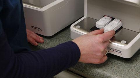 Automatic immunoassay analyzer / bench-top / ELISA