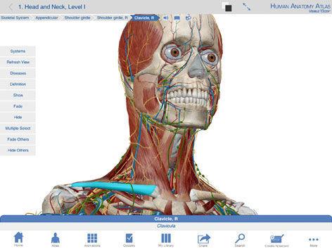 Capture software / 3D viewing / education / anatomy Human Anatomy Atlas  Visible Body