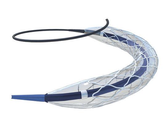Coronary stent - Siro™ - InSitu Technologies - polymer / drug eluting