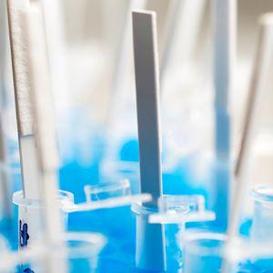 rapid DNA test