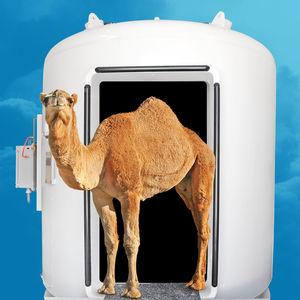 veterinary hyperbaric chamber
