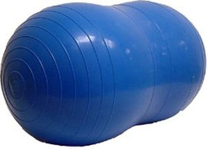 large physio roll