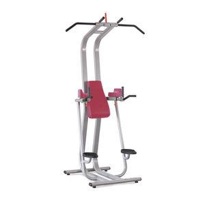 dips gym station