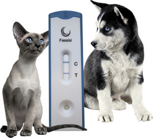 rapid gastrointestinal disease test / hygiene / for cats / dog
