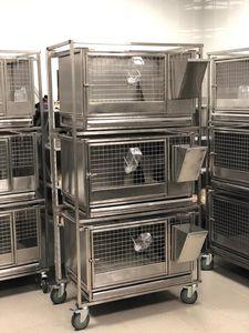rabbit veterinary cage